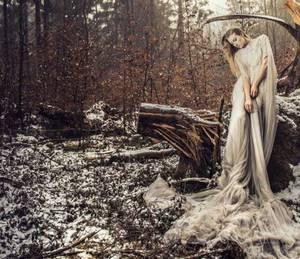 风致绝艳江湖 重生之少女巫王