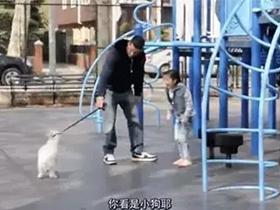 拐走一个孩子到底有多容易?4种方法最常见!