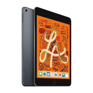 iPad平板【iPad mini 5 7.9英寸(19款)】64G 95新  WIFI版 深空灰付款后7天内发货