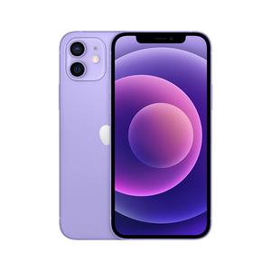 资源机【苹果iPhone12】5G全网通 64G 99新  国行 紫色